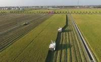 家庭农场生产经营专业就业前景